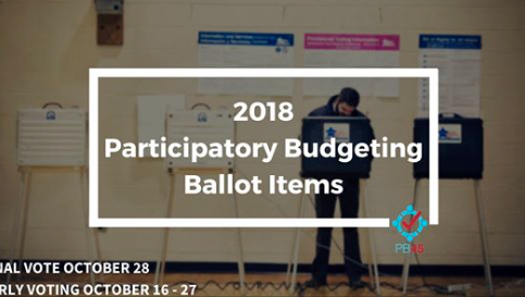 2018 Participatory Budgeting Ballot Items